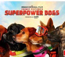 Superpower-Dogs-Omniversum