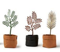 leaffies