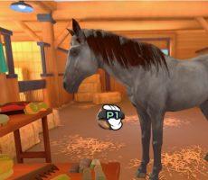paardriden