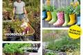 Tuinieren met weinig poen